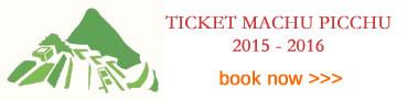 2014 Ticket Machu Picchu