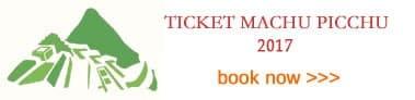 2017 Ticket Machu Picchu